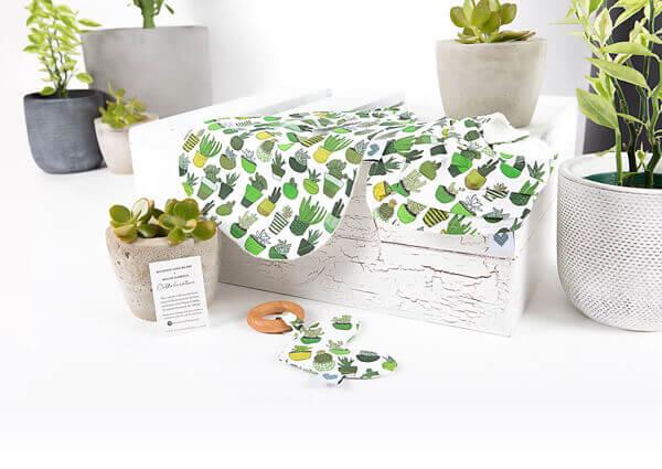 Bandana Bib Cactus