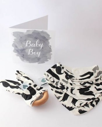 Baby-Shower-Gift-Mini-Moustaches