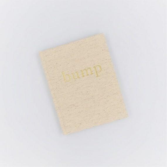 Pregnancy diary book